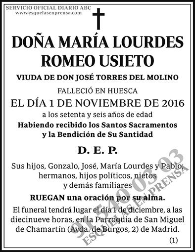 María Lourdes Romeo Usieto